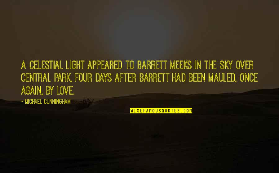 Meeks Quotes By Michael Cunningham: A celestial light appeared to Barrett Meeks in