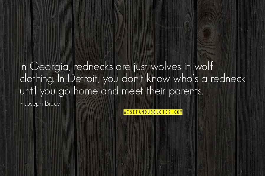 Meet The Parents Quotes By Joseph Bruce: In Georgia, rednecks are just wolves in wolf