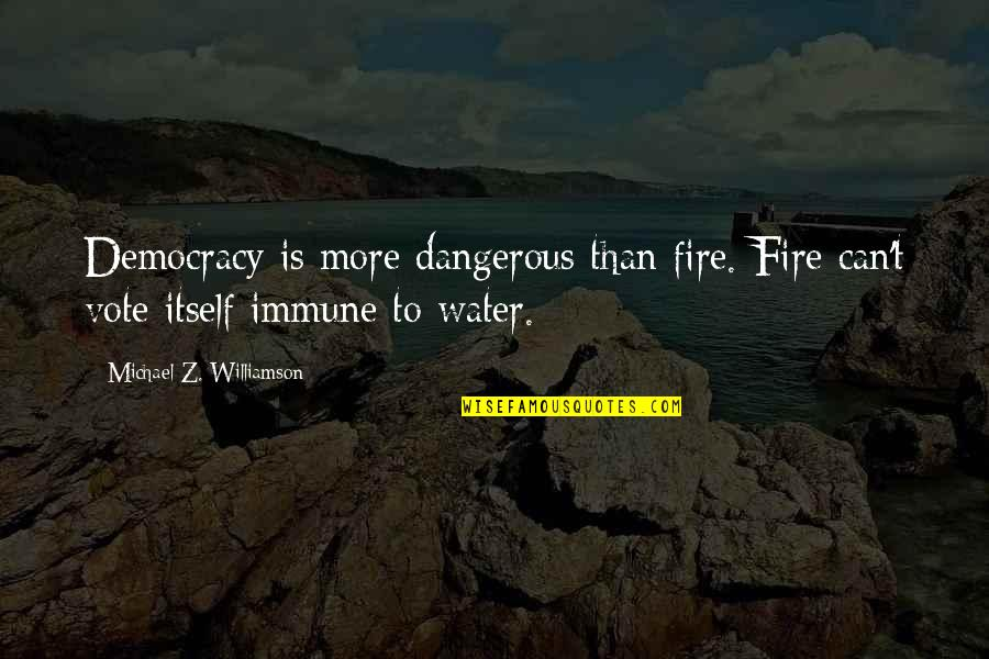 Meeting New Boyfriend Quotes By Michael Z. Williamson: Democracy is more dangerous than fire. Fire can't