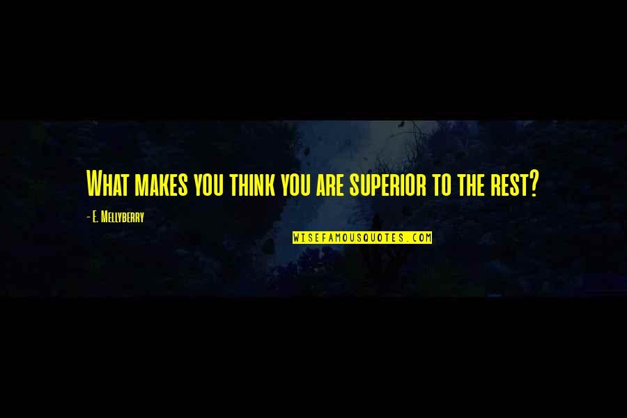 Meeting Someone Better Quotes By E. Mellyberry: What makes you think you are superior to