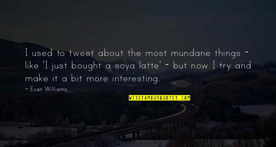 Meeting Someone Better Quotes By Evan Williams: I used to tweet about the most mundane