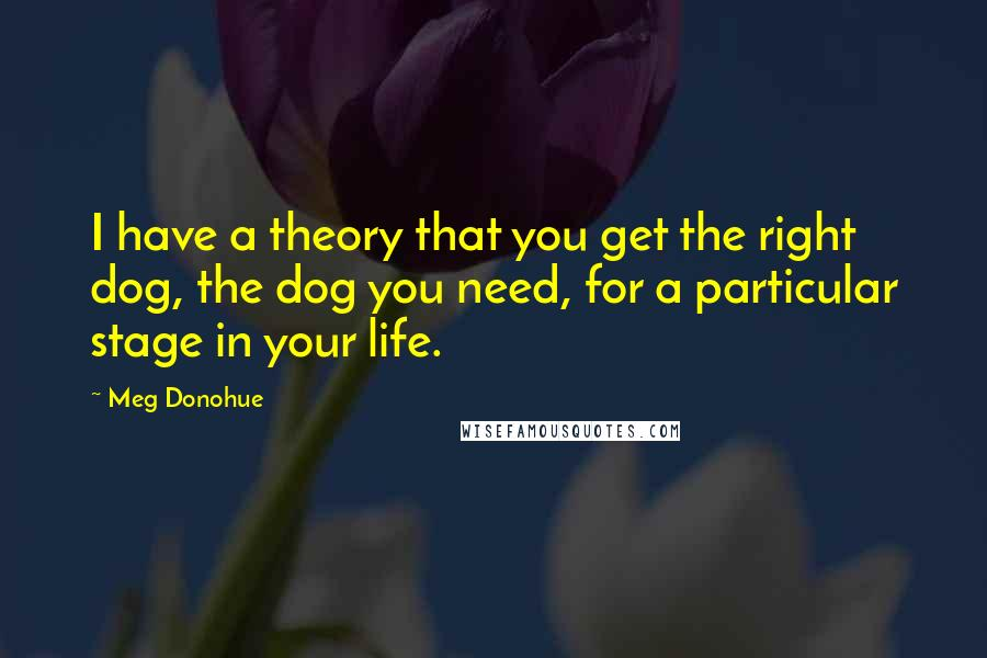 Meg Donohue quotes: I have a theory that you get the right dog, the dog you need, for a particular stage in your life.