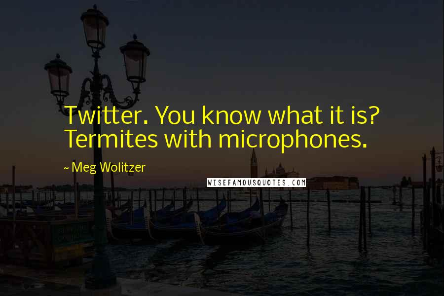 Meg Wolitzer quotes: Twitter. You know what it is? Termites with microphones.