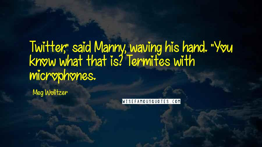 "Meg Wolitzer quotes: Twitter,"" said Manny, waving his hand. ""You know what that is? Termites with microphones."