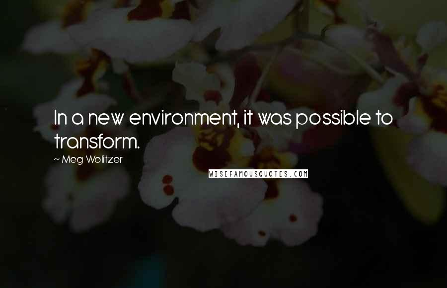 Meg Wolitzer quotes: In a new environment, it was possible to transform.