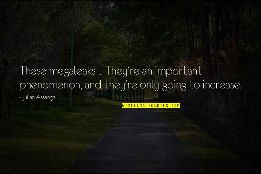 Megaleaks Quotes By Julian Assange: These megaleaks ... They're an important phenomenon, and