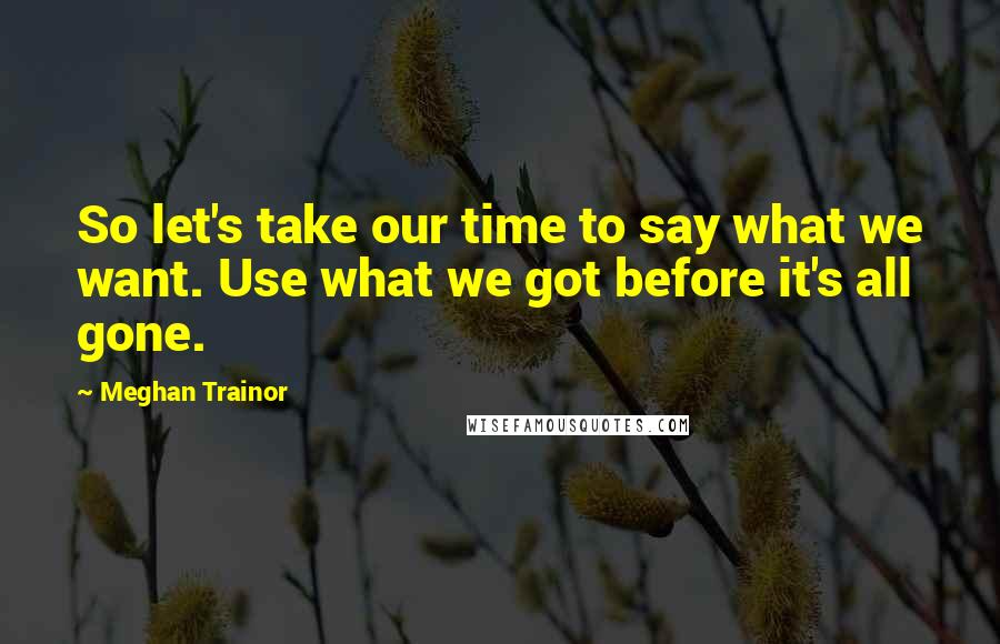 Meghan Trainor quotes: So let's take our time to say what we want. Use what we got before it's all gone.