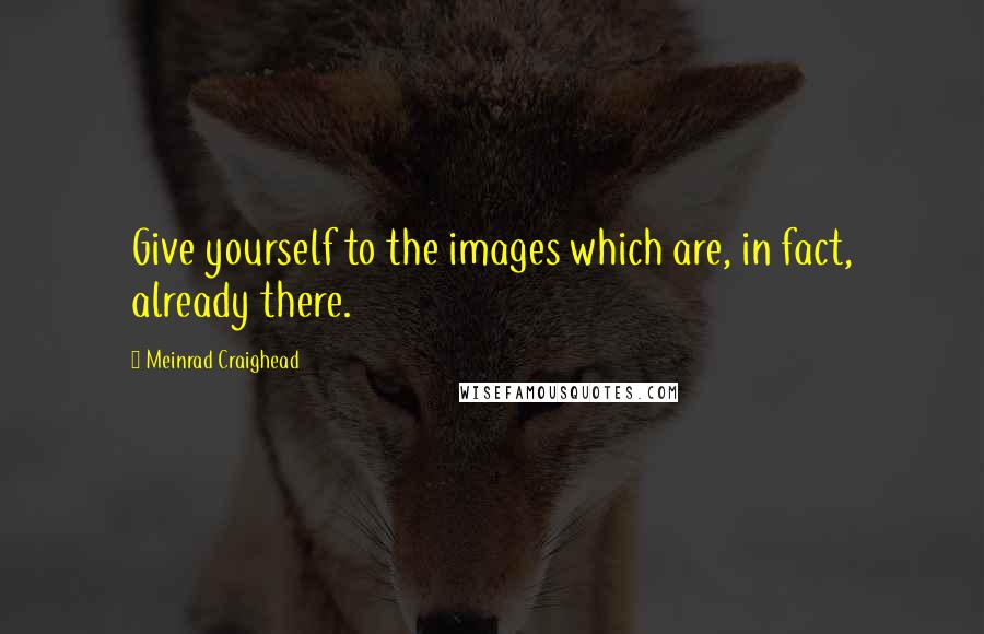 Meinrad Craighead quotes: Give yourself to the images which are, in fact, already there.