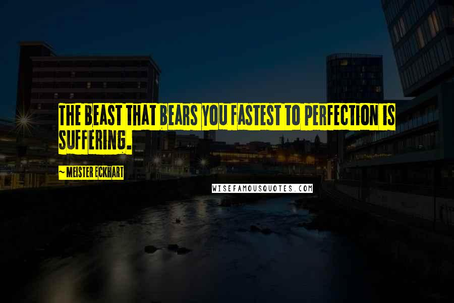 Meister Eckhart quotes: The beast that bears you fastest to perfection is suffering.