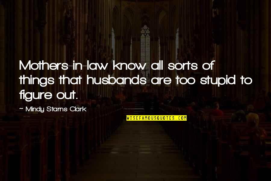 Mejo Bastos Quotes By Mindy Starns Clark: Mothers-in-law know all sorts of things that husbands