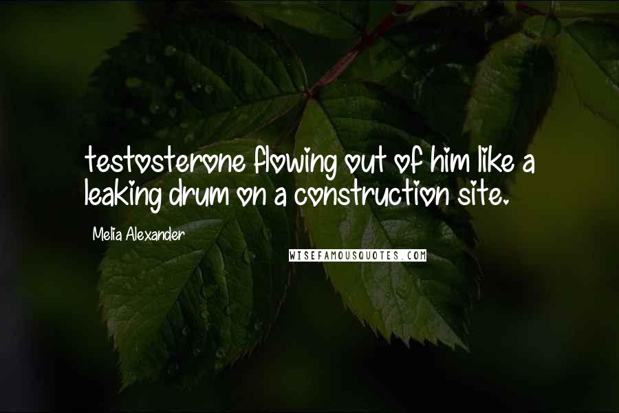 Melia Alexander quotes: testosterone flowing out of him like a leaking drum on a construction site.