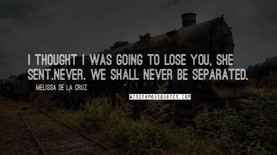 Melissa De La Cruz quotes: I thought I was going to lose you, she sent.Never. We shall never be separated.