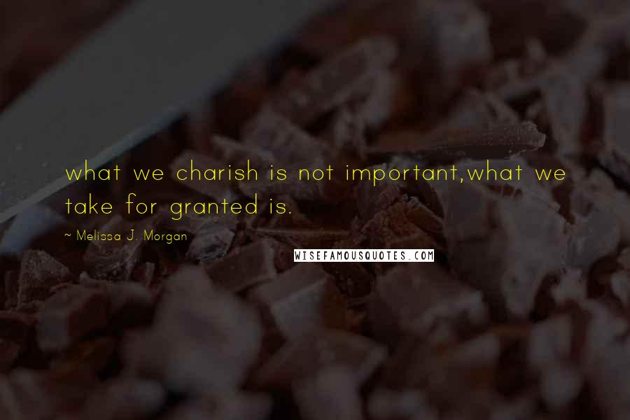 Melissa J. Morgan quotes: what we charish is not important,what we take for granted is.