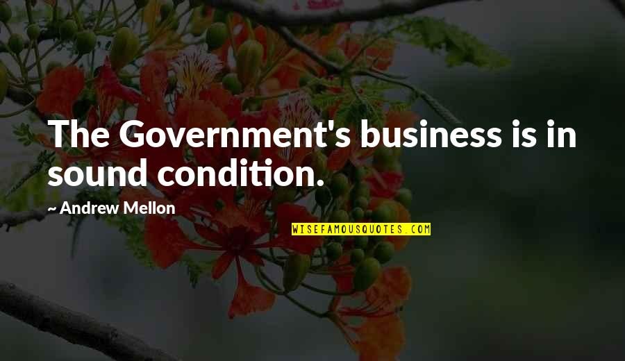 Mellon Quotes By Andrew Mellon: The Government's business is in sound condition.