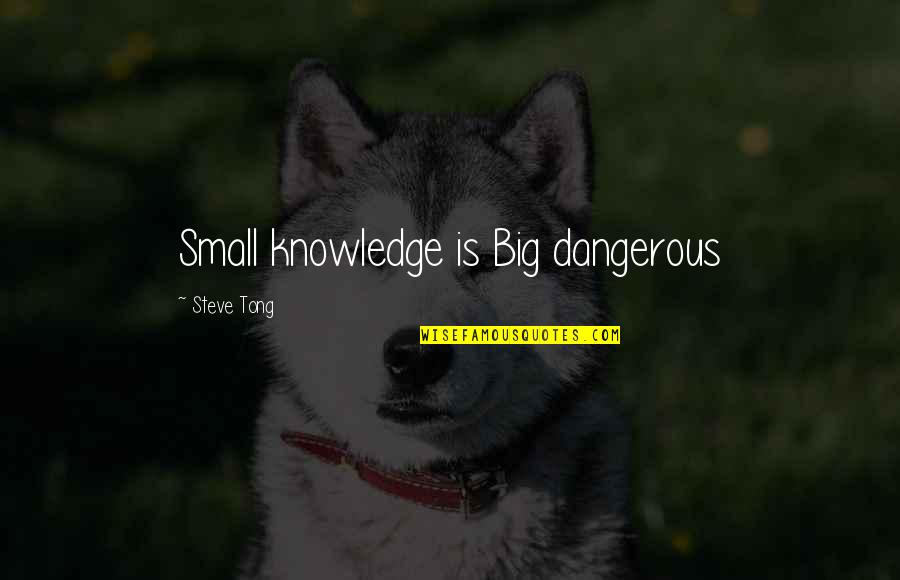 Melody Carlson Quotes By Steve Tong: Small knowledge is Big dangerous
