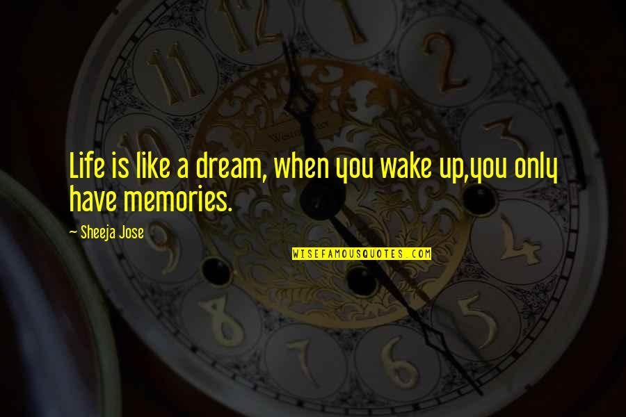 Memories And Goodbye Quotes By Sheeja Jose: Life is like a dream, when you wake