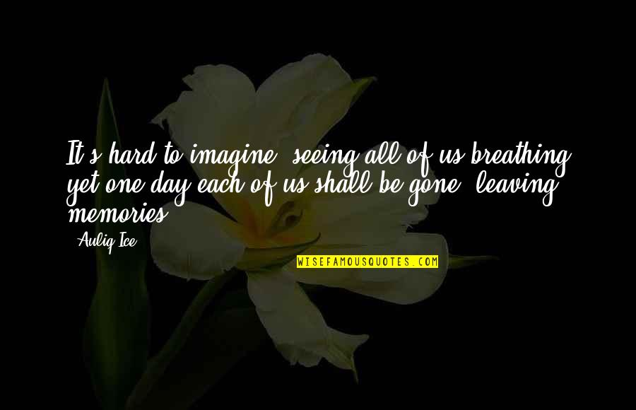 Memories Of Us Quotes By Auliq Ice: It's hard to imagine, seeing all of us