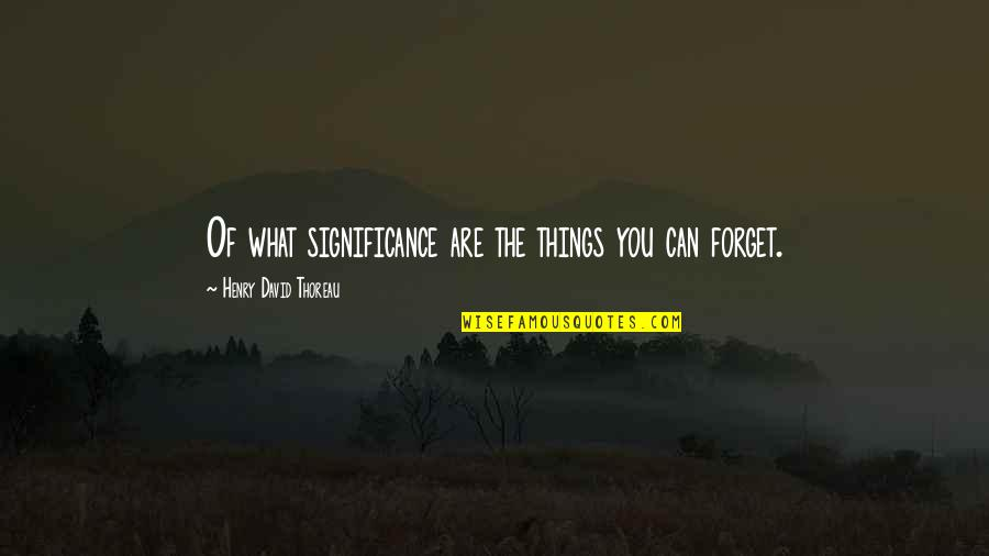 Memories You Can't Forget Quotes By Henry David Thoreau: Of what significance are the things you can
