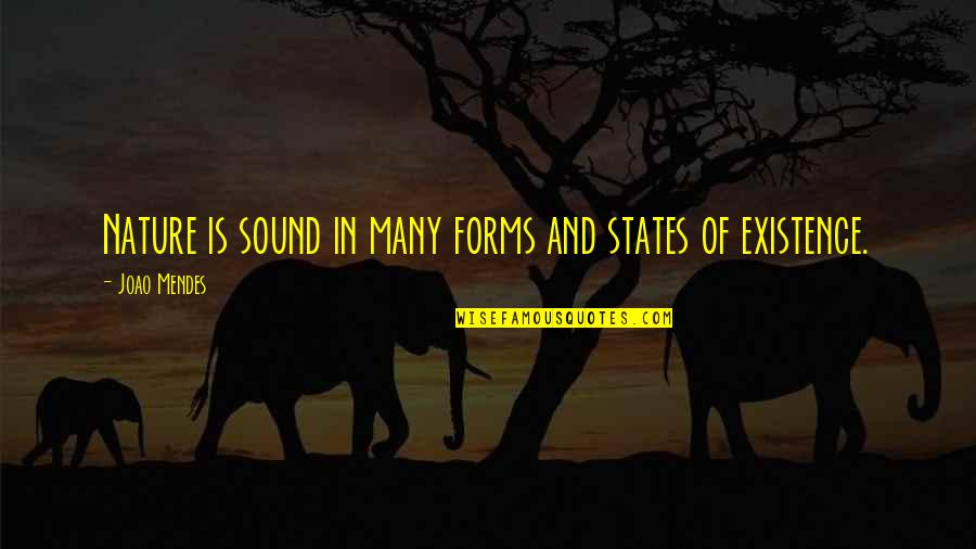 Mendes Quotes By Joao Mendes: Nature is sound in many forms and states