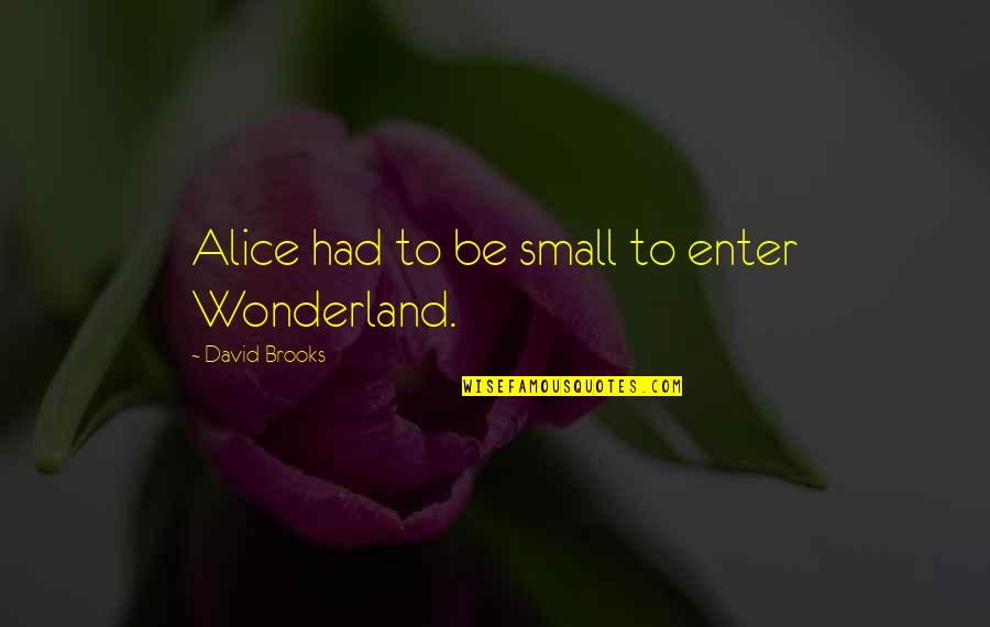Menkind Quotes By David Brooks: Alice had to be small to enter Wonderland.