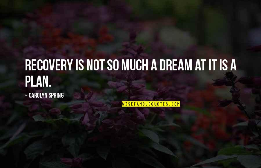Mental Health Illness Quotes By Carolyn Spring: Recovery is not so much a dream at