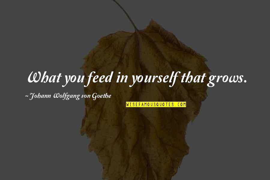 Mental State Of Mind Quotes By Johann Wolfgang Von Goethe: What you feed in yourself that grows.
