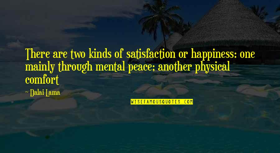 Mental Vs Physical Quotes By Dalai Lama: There are two kinds of satisfaction or happiness: