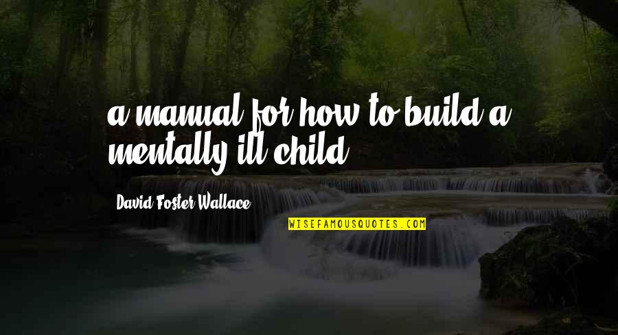 Mentally Ill Quotes By David Foster Wallace: a manual for how to build a mentally