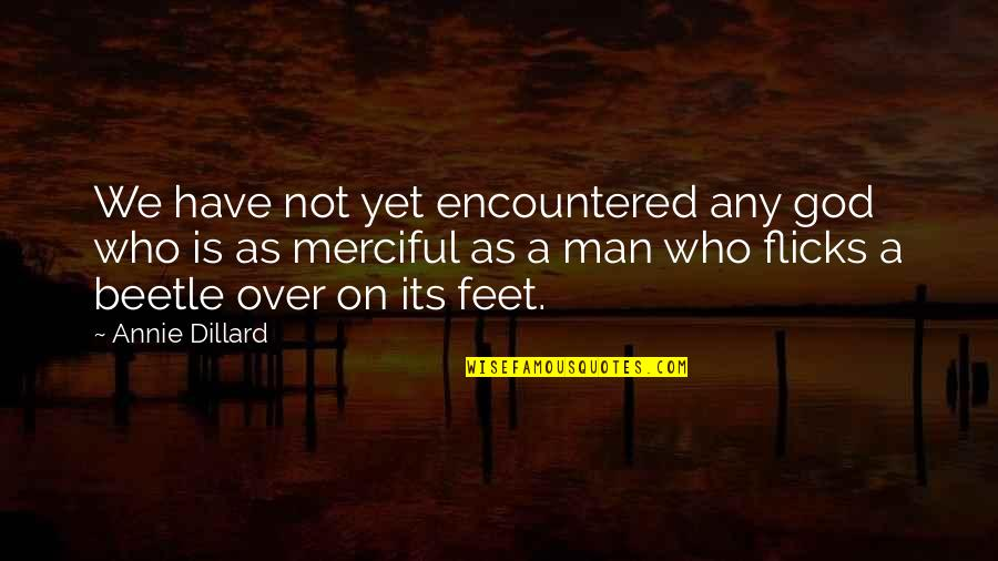 Merciful God Quotes By Annie Dillard: We have not yet encountered any god who
