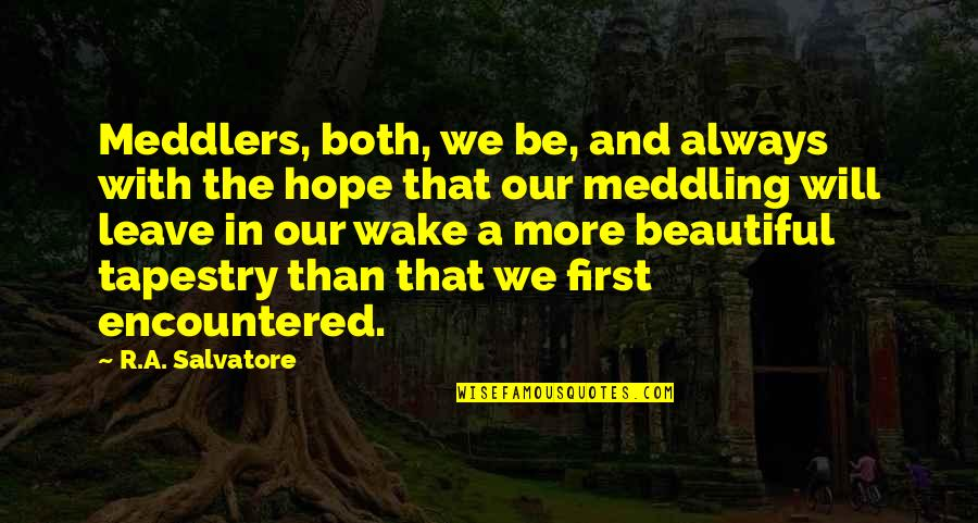 Merck's Quotes By R.A. Salvatore: Meddlers, both, we be, and always with the