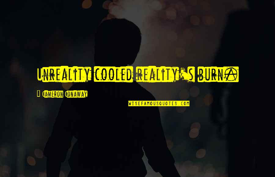 Merryweather Quotes By Cameron Conaway: Unreality cooled reality's burn.