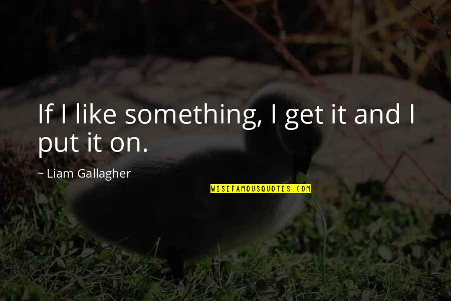 Merryweather Quotes By Liam Gallagher: If I like something, I get it and