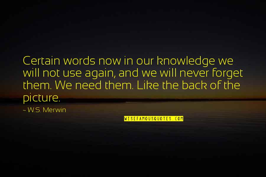 Merwin Quotes By W.S. Merwin: Certain words now in our knowledge we will