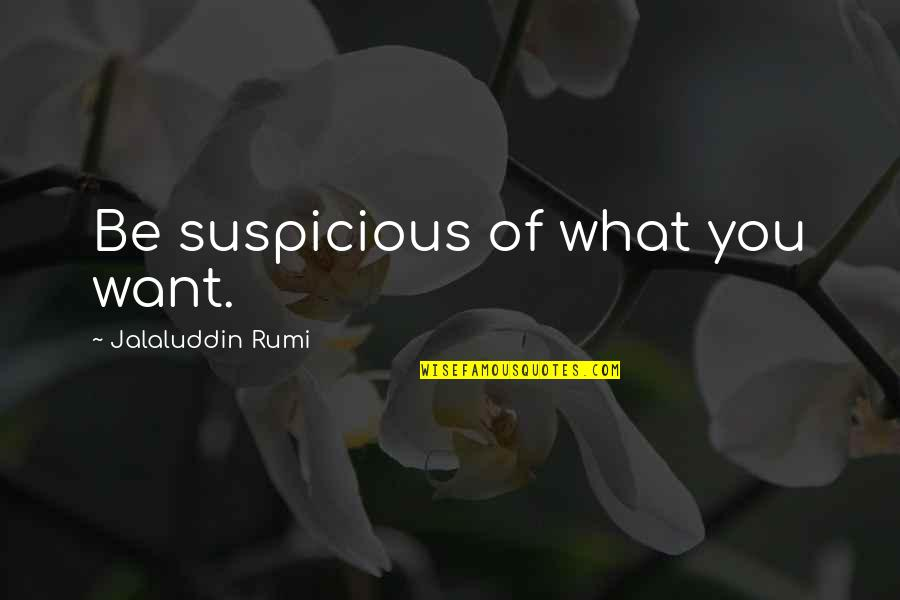 Metal Gear Quotes By Jalaluddin Rumi: Be suspicious of what you want.