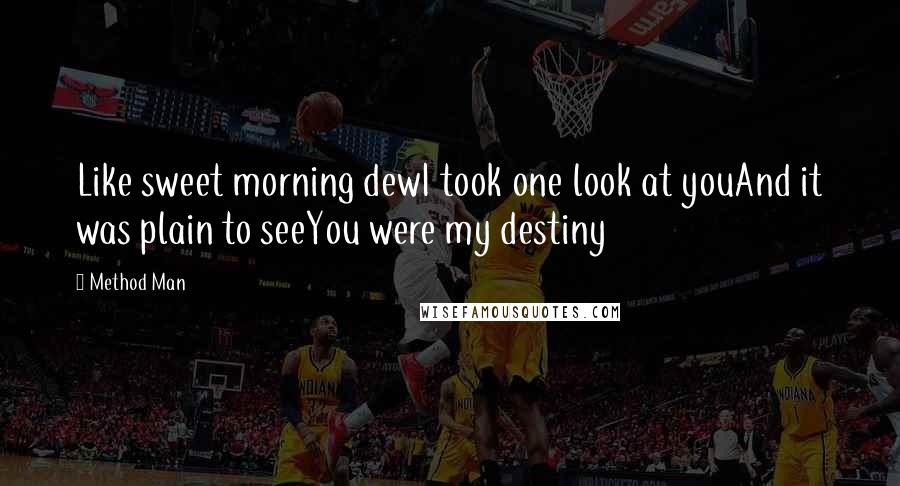 Method Man quotes: Like sweet morning dewI took one look at youAnd it was plain to seeYou were my destiny