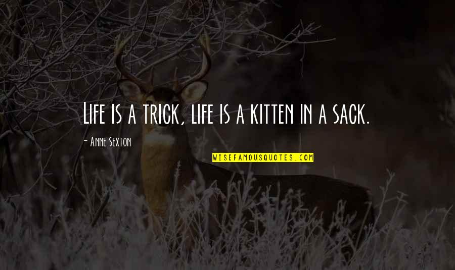 Mezzaro Quotes By Anne Sexton: Life is a trick, life is a kitten