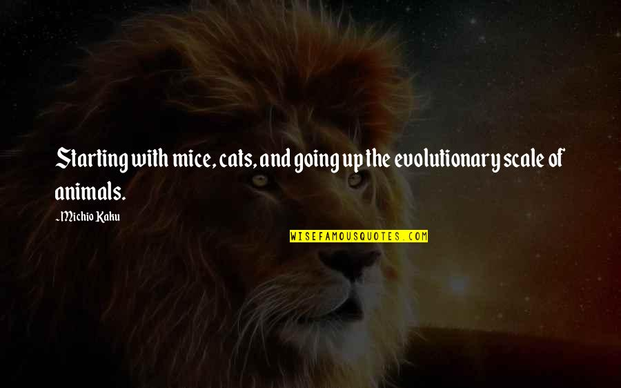 Mice And Cats Quotes By Michio Kaku: Starting with mice, cats, and going up the