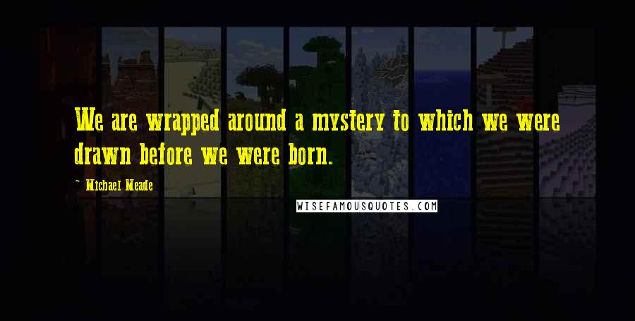 Michael Meade quotes: We are wrapped around a mystery to which we were drawn before we were born.