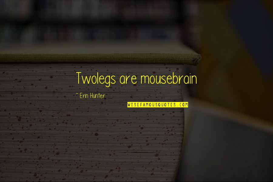 Michael Morwood Quotes By Erin Hunter: Twolegs are mousebrain