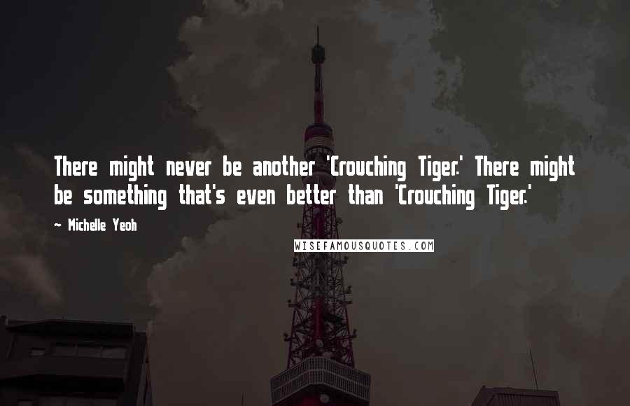 Michelle Yeoh quotes: There might never be another 'Crouching Tiger.' There might be something that's even better than 'Crouching Tiger.'