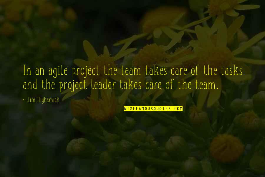 Mickeys Cap Quotes By Jim Highsmith: In an agile project the team takes care