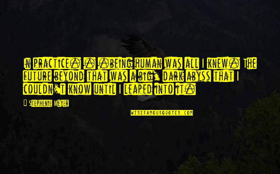 Microsurgeon Quotes By Stephenie Meyer: In practice. . .being human was all I