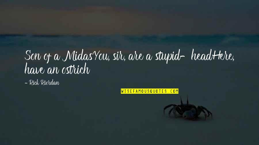 Midas's Quotes By Rick Riordan: Son of a MidasYou, sir, are a stupid-headHere,