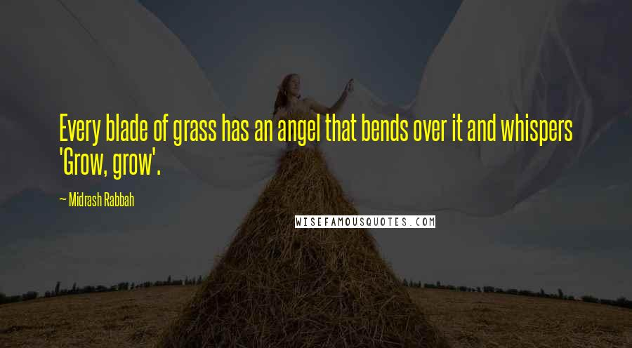 Midrash Rabbah quotes: Every blade of grass has an angel that bends over it and whispers 'Grow, grow'.
