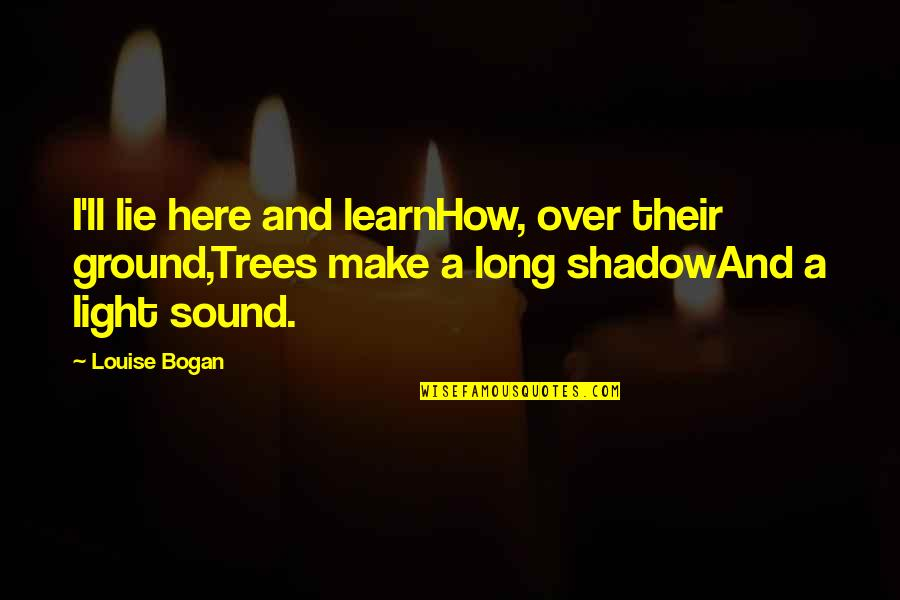 Midterm Election Quotes By Louise Bogan: I'll lie here and learnHow, over their ground,Trees