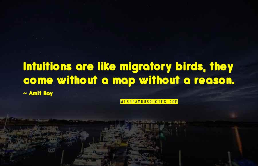 Migratory Birds Quotes By Amit Ray: Intuitions are like migratory birds, they come without