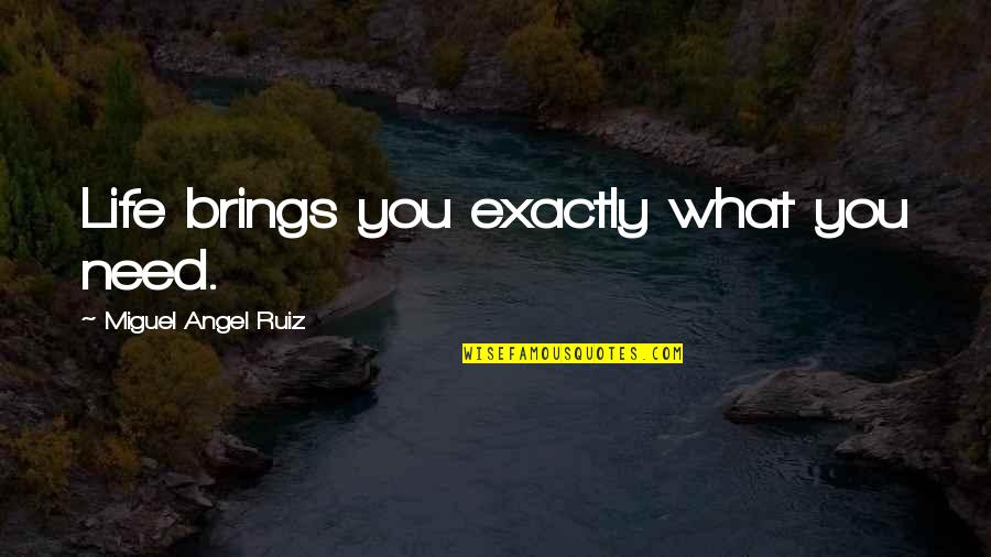 Miguel Angel Quotes By Miguel Angel Ruiz: Life brings you exactly what you need.