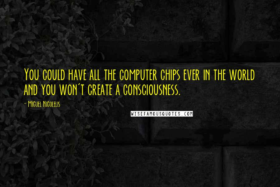Miguel Nicolelis quotes: You could have all the computer chips ever in the world and you won't create a consciousness.