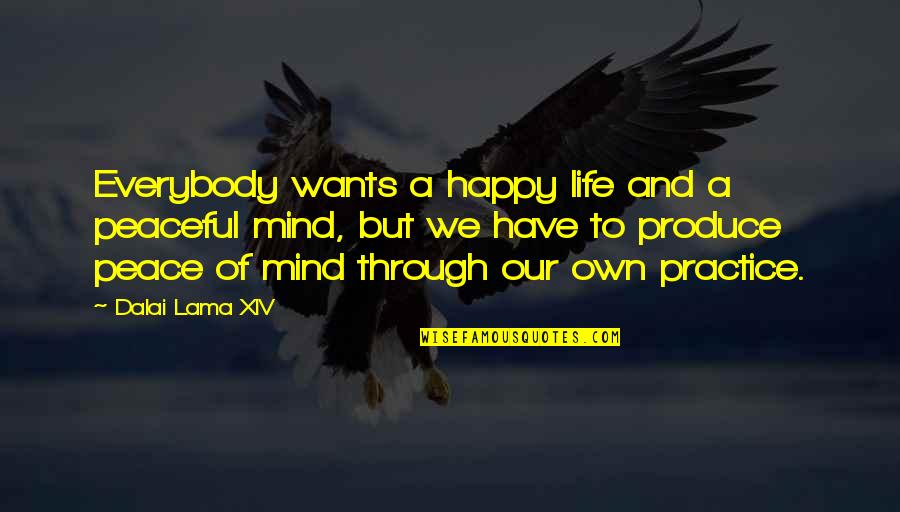 Mind And Peace Quotes By Dalai Lama XIV: Everybody wants a happy life and a peaceful