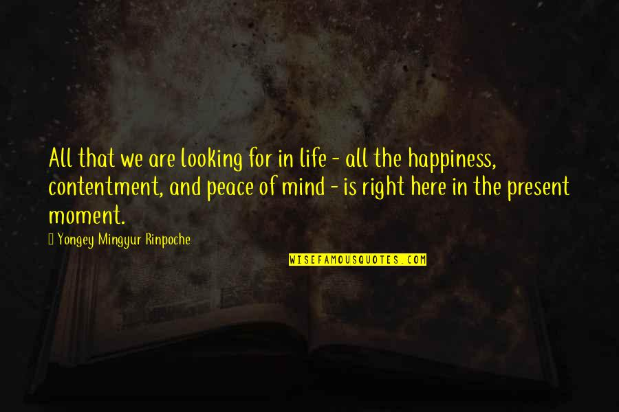Mind And Peace Quotes By Yongey Mingyur Rinpoche: All that we are looking for in life
